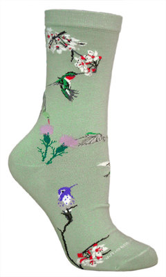 Hummingbird Socks in Monterey, CA