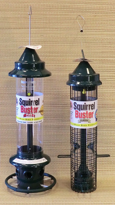 Squirrel Busters